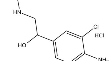 clenbuterol adrenoreceptors